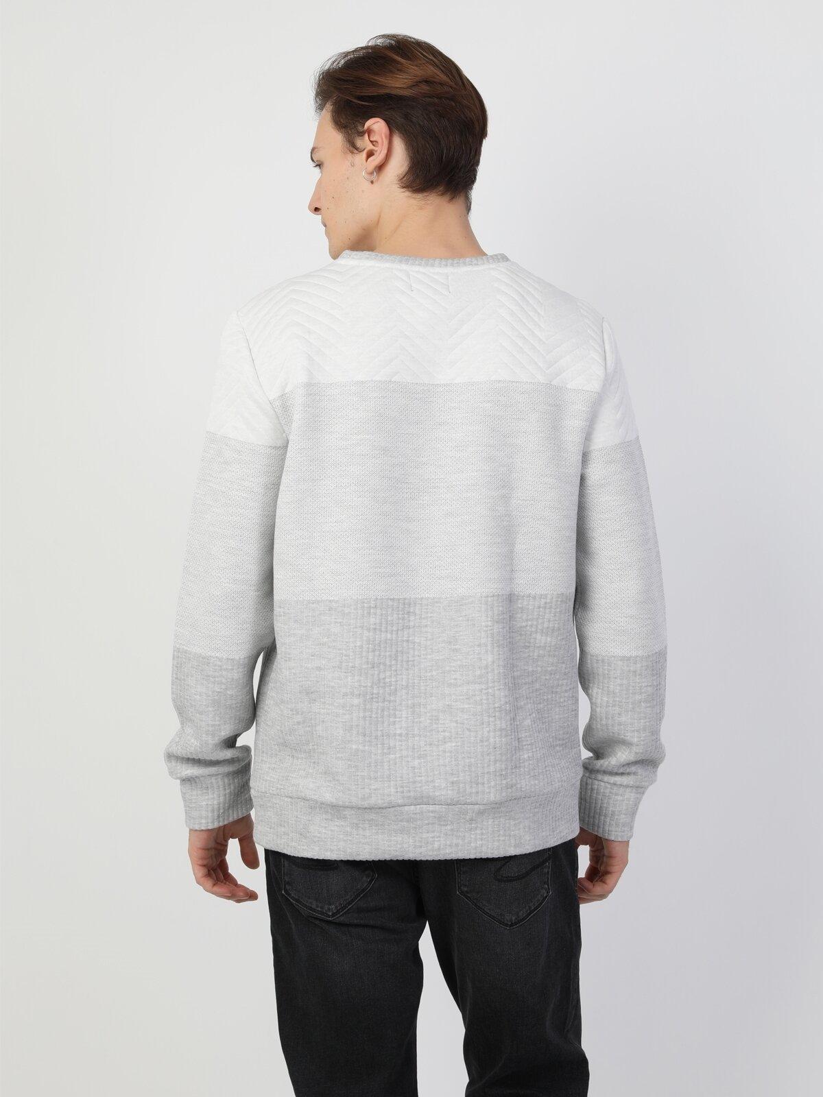 Regular Fit Erkek Gri Sweatshirt