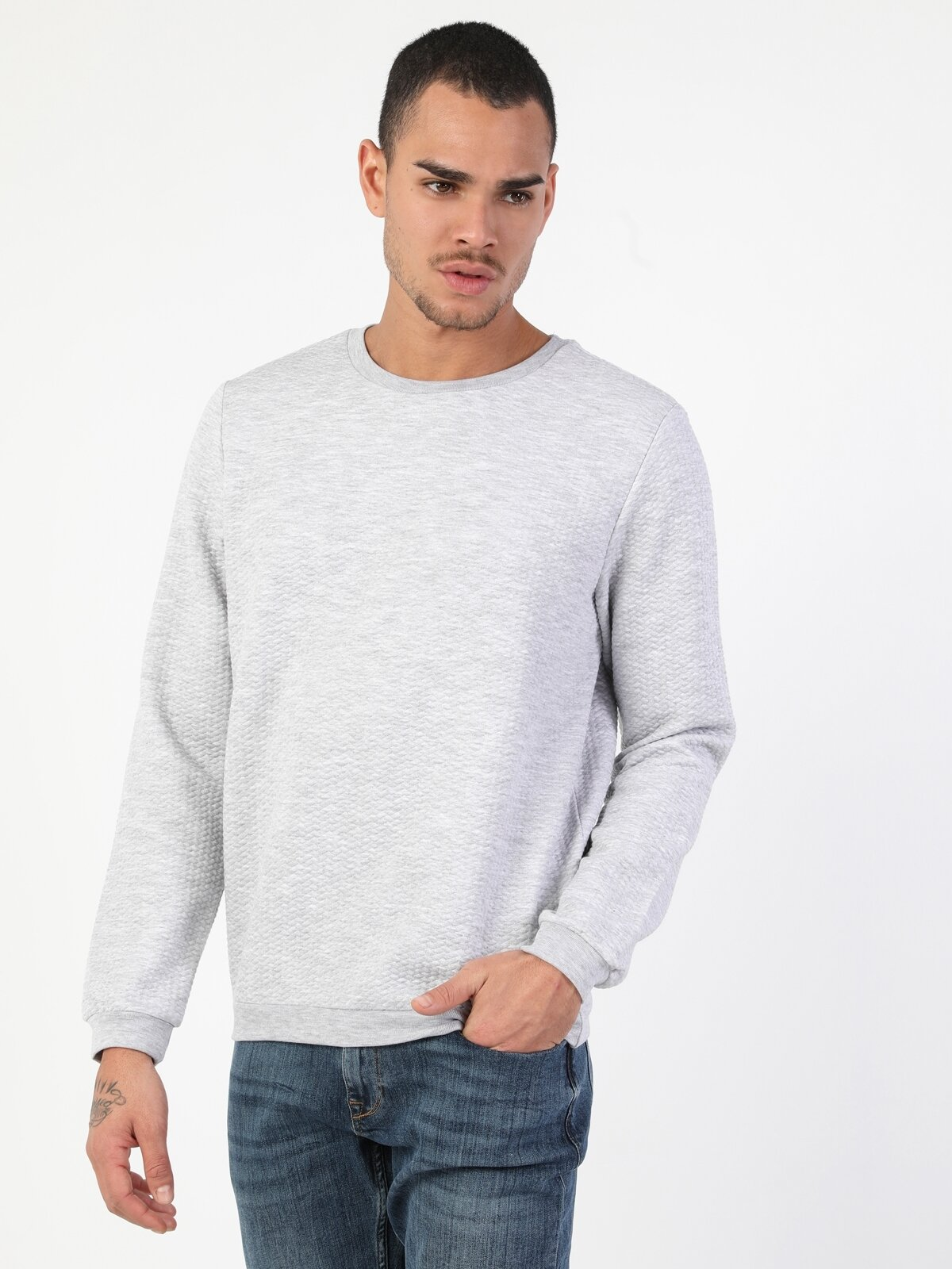 Regular Fit Erkek Gri Sweatshirt